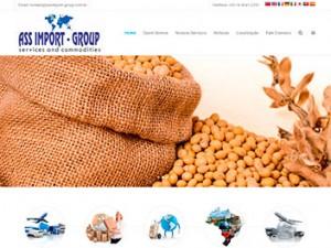 Criação de Sites para Services e Commodities